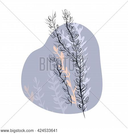 Delicate Illustration Of Outline Sketch Of Wild Herbs With Thorns On Gentle Pastel Color Spot With S