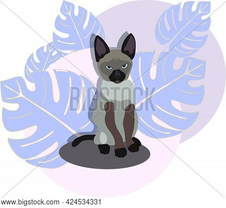 Blue Eyed Siamese Kitten Looks On Your. Cute Cat With Exotic Blue Leaves On Background. Cartoon Baby