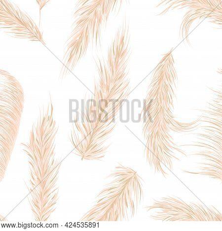 Dry Pampas Grass Seamless Vector Pattern. Boho. Vector Illustration.