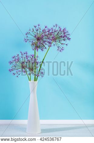 Persian onion or Star of Persia flowers in a vase