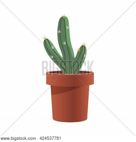 Prickly Green Cactus Growing In Flowerpot As Houseplant Vector Illustration
