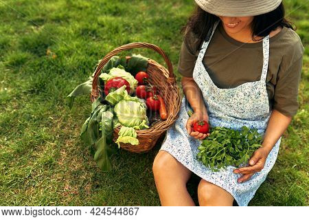 Owner Female Gardener With A Basket With Freshly Picked Ecological Vegetables Sitting On The Grass A
