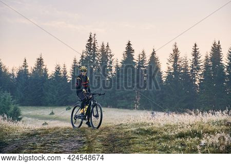Male Cyclist In Cycling Suit Riding Bike On Mountain Trail With Coniferous Trees On Background. Man