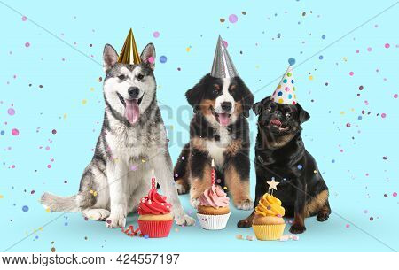 Cute Dogs With Party Hats And Delicious Birthday Cupcakes On Light Blue Background