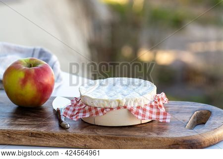 Cheese Collection, French Cheese From Normandy Region, Round Camembert Chees