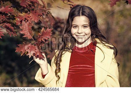 Hello October. Small Girl Play On Fresh Air On Sunny Autumn Day. Little Child Walk In Autumn Park. H