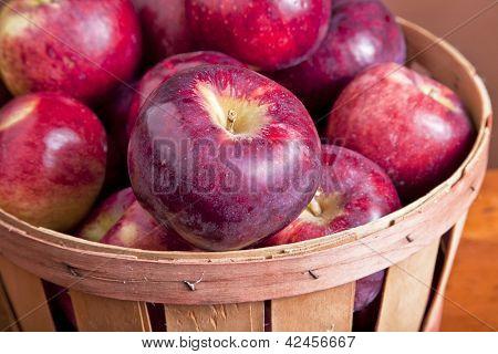 A basket full of farm fresh Cortland apples.