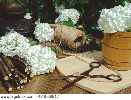 Composition Of Antiques On A Wooden Table And Cut Spherical Buds Of Boulle De Neige Viburnum With Ma