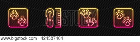 Set Line Frog Paw Footprint, Paw, Square Measure Size And . Glowing Neon Icon. Vector