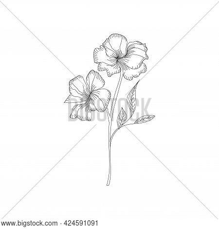 Hibiscus Flower. Tropical Plant Doodle. Floral Scrawl. Hibiscus Sketch. Scribble Vector. Jungle Natu