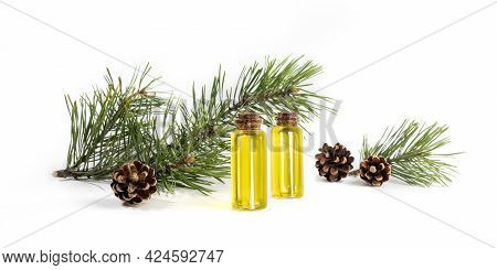 Composition Of Small Glass Bottles With Essential Pine Oil, Green Branches And Cones On White. Banne