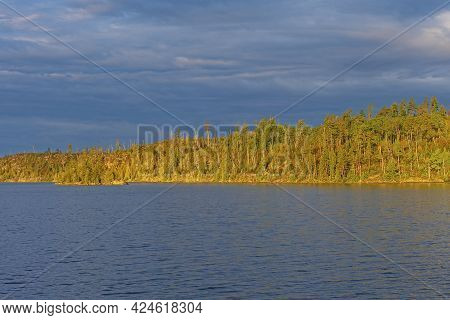 Sun Painting The Trees Against A Blue Sky And Lake On Knife Lake In The Boundary Waters In Minnesota