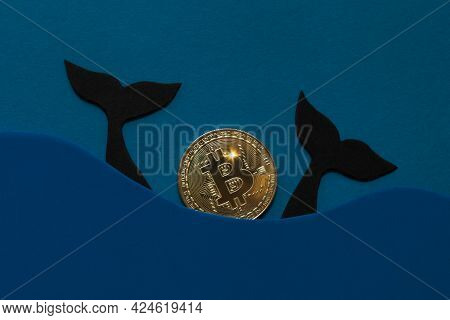 Bitcoin Whale Concept. Large Holders Of Coin. Manipulated Currency Valuations
