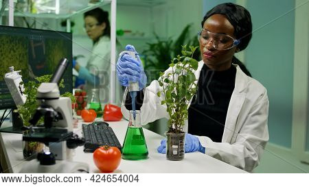 African Botanist Researcher Taking Genetic Solution From Test Tube With Micropipette Putting On Sapl