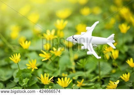 White Airplane Model On Flower Fresh Green Leaves Background. Sustainable Travel. Clean And Green En