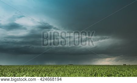 Cloudy Rainy Sky. Dramatic Sky With Dark Clouds In Rain Day. Storm And Clouds Above Summer Maize Cor
