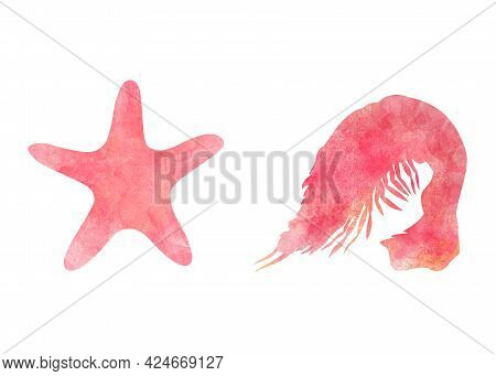 Set Of Two Aquarelle Red Sea Animals On White Background Hand-drawn Digital Illustration: Starfish A