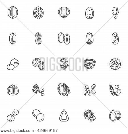 Nuts And Beans Line Icons Set. Linear Style Symbols Collection, Outline Signs Pack. Nuts And Seeds V