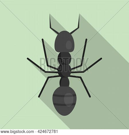 Farmer Ant Icon. Flat Illustration Of Farmer Ant Vector Icon For Web Design