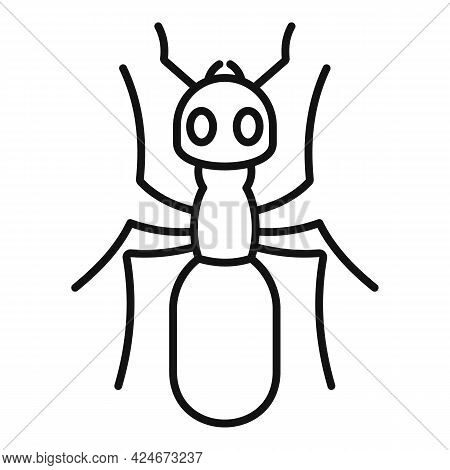 Insect Ant Icon. Outline Insect Ant Vector Icon For Web Design Isolated On White Background