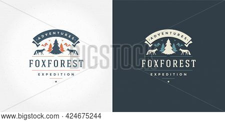 Forest Camping Logo Emblem Outdoor Adventure Vector Illustration Pine Tree Silhouette For Shirt Or P