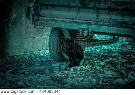 Scary Mysterious Abstract Background In Horror Style With Strange Green Light And Night Shadows, Bla