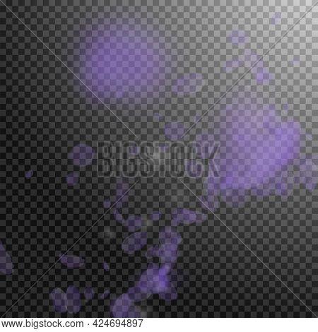 Violet Flower Petals Falling Down. Bizarre Romantic Flowers Corner. Flying Petal On Transparent Squa