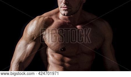 Handsome Man With Muscular Topless Body. Torso Six Packs Attractive. Six Pack Abs. Strong Man With T