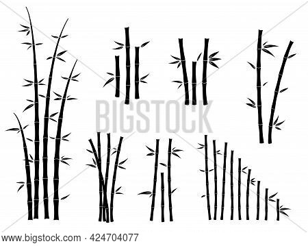 Set Of Bamboo Asian Culture Icons Or Asian Bamboo Silhouette Isolated Or Various Bamboo Stalks And S