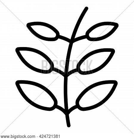 Lentil Plant Icon. Outline Lentil Plant Vector Icon For Web Design Isolated On White Background