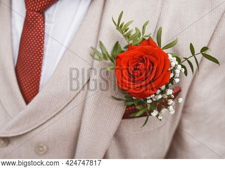 Men's Beige Wedding Suit With A Red Polka Dot Tie, Decorated With A Rose, Close-up.