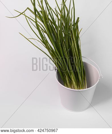 Fresh Spring Green Onions In A White Bucket. A Bunch Of Onions. On A White Background.