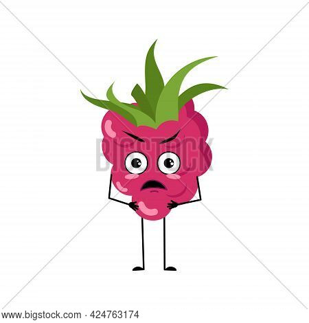 Cute Raspberry Character With Angry Emotions, Face, Arms And Legs. The Funny Or Grumpy Berry For A C