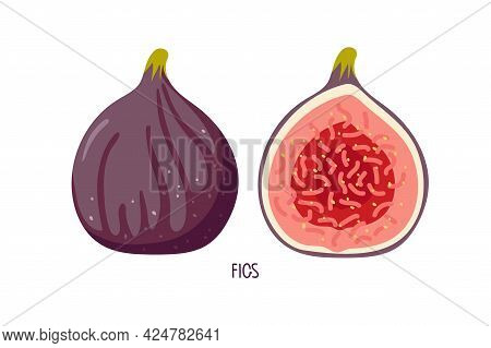 Two Figs, Whole And Half Isolated On White. Summer Tropical Fruit For Healthy Lifestyle. Purple Whol