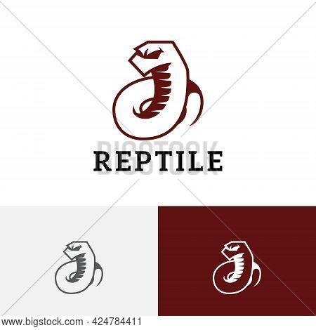 White Snake Serpent Reptile Rattlesnake Venomous Wild Animal Logo
