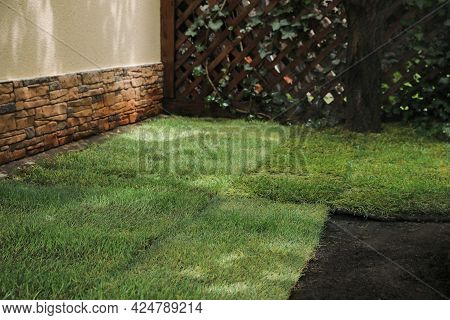 Unrolled Grass Sods On Ground In Backyard