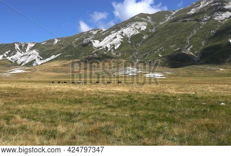 Wide Panorama Of The Apennines In The Abruzzo Region In Central Italy On A Sunny Summer Day And In T