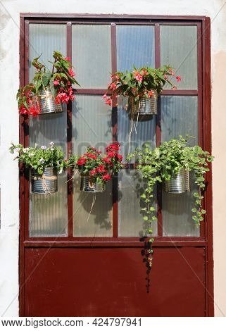 Door Of An House Decorated With Flowers In The Pots