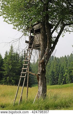 Wooden Hut Used By Hunters To Shoot Birds Camouflage