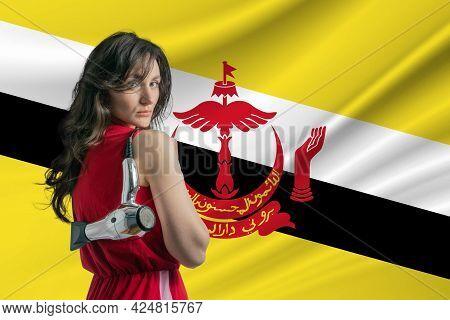Beauty Industry In Brunei. Happy Female Hairdresser Holding Hairdryer Against Brunei Flag Background