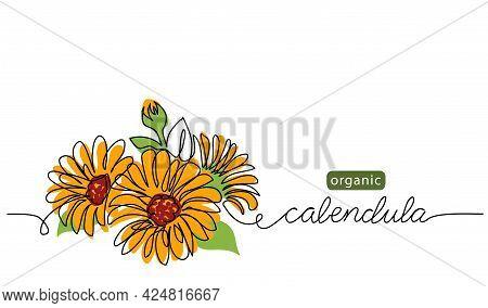 Calendula, Marigold Flower Vector Illustration, Background For Label Design. One Continuous Line Art