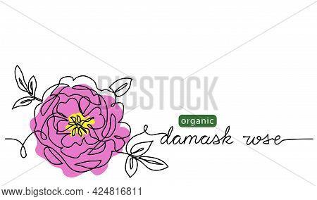 Damask Rose, Bulgarian Flower Vector Illustration, Background For Label Design. One Continuous Line