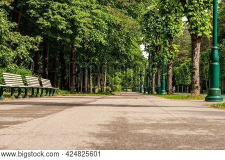 Path In The Forest Park, Riga (mežaparks) At Summer. Low Angle Photo Of Alley In The Park Lined With