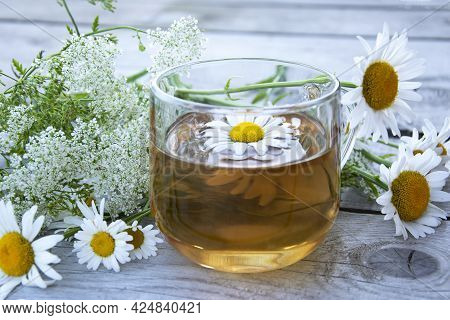 Chamomile Tea Close-up. Summer Still Life With Wildflowers And Chamomile Drink In A Glass Cup. Flora