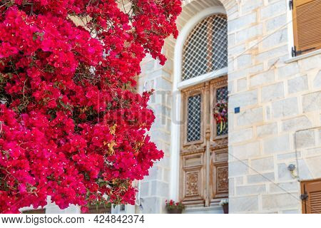 Bougainvillea With Red Flowers At Ermoupolis Capital Of Syros Island, Cyclades, Greece.