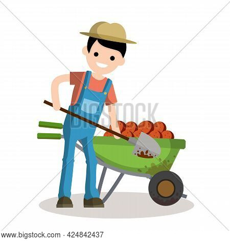 Rural Boy Digging Potatoes With A Spade. Rustic Cart With Vegetables. Countryside Work. Element Of V