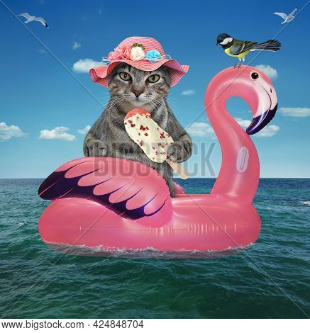 A Gray Cat In A Pink Straw Hat With Ice Cream Is Floating On An Inflatable Flamingo In The Sea At A