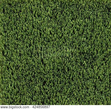 Green Artificial Turf Grass In Overhead View