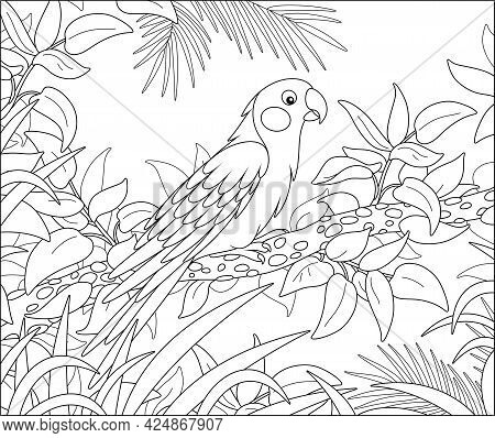 Exotic Parrot With A Long Tail Perched On A Tree Branch In A Tropical Jungle, Black And White Outlin