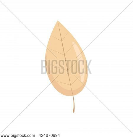 Yellow Fallen Leaf In Flat Style, Autumn Leaves, Vector Object In Flat Style. Isolate
